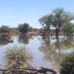 Katjapia_Guestfarm_Namibia7